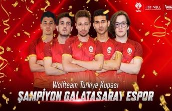 Wolfteam Türkiye Kupası'nın sahibi Galatasaray...